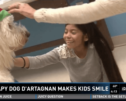 service dog child therapy