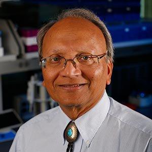 Photo of Vinodh Narayanan